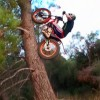 Bicycle & Bike Stunts – Amazing